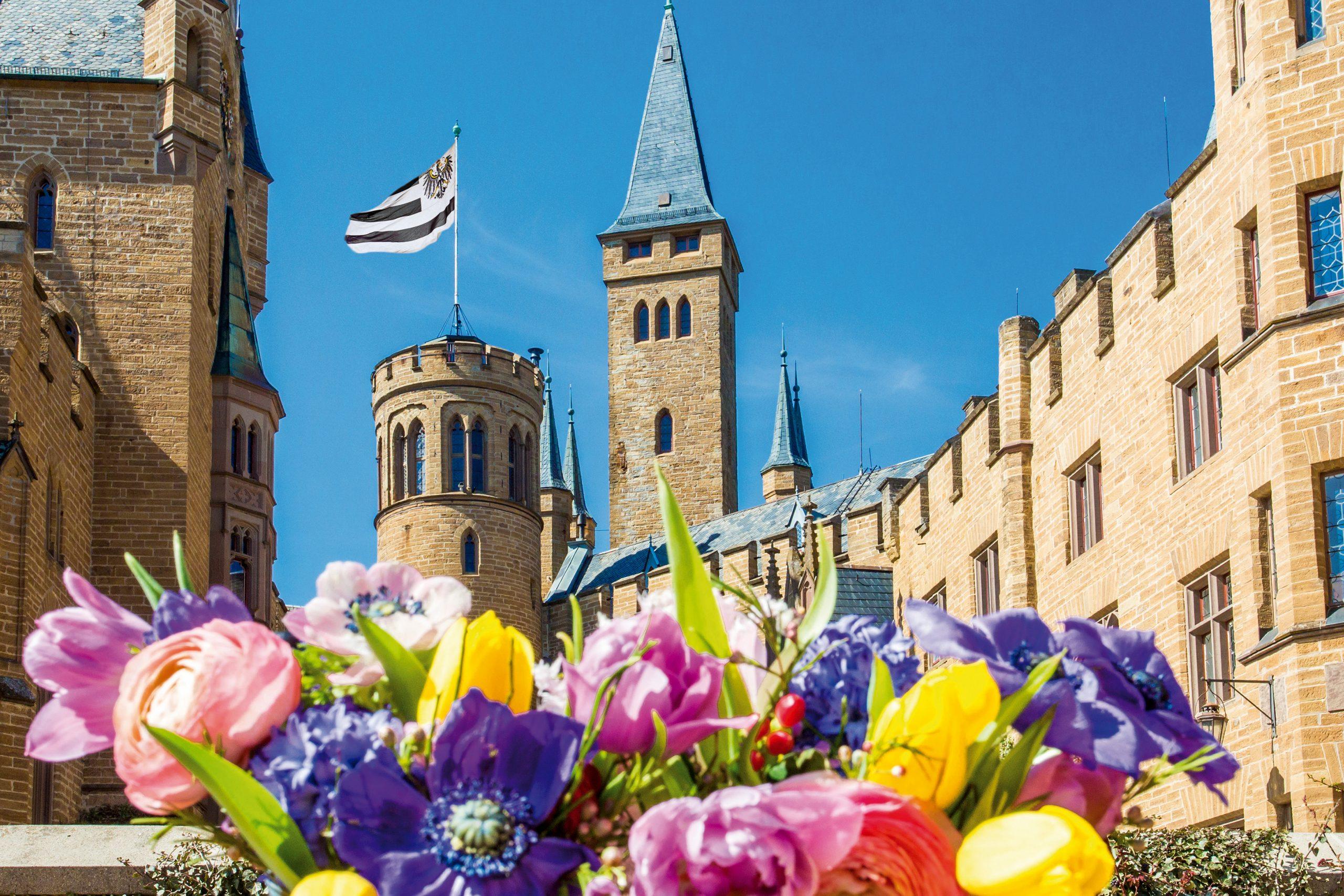Frühlingsblumen im Burghof der Burg Hohenzollern